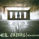Windshield thumbnail