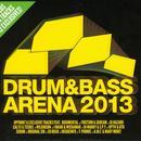 Drum & Bass Arena 2013 thumbnail