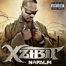 Napalm (Explicit) thumbnail