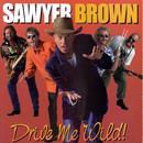 Drive Me Wild thumbnail
