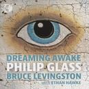 Glass: Dreaming Awake thumbnail