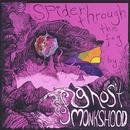 Spider Through The Fog thumbnail