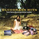 Bluegrass Hits: Twenty Timeless Favorites From Yesterday And Today thumbnail
