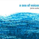 A Sea Of Voices thumbnail