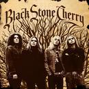 Black Stone Cherry thumbnail