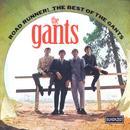 Road Runner! The Best Of The Gants thumbnail
