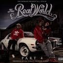 The Real World 4 thumbnail