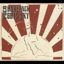 Bareback At Big Sky thumbnail