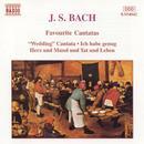 Bach: Favorite Cantatas thumbnail