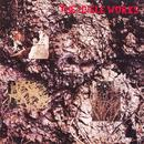 The Icicle Works thumbnail