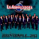 Irreversible ... 2012 thumbnail