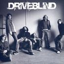 Driveblind thumbnail