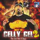 Best Of Celly Cel, Vol. 2: The Sick Wid It Dayz thumbnail