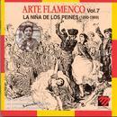Arte Flamenco Vol.7 thumbnail