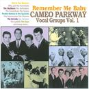 Remember Me Baby: Cameo Parkway Vocal Groups Vol. 1 thumbnail