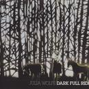 Julia Wolfe: Dark Full Ride thumbnail