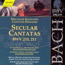 Bach: Secular Cantatas Bwv 210, 211 thumbnail