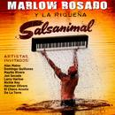 Salsanimal thumbnail