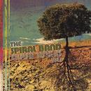 The Spiral Band thumbnail