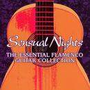 Sensual Nights: The Essential Flamenco Guitar Collection thumbnail