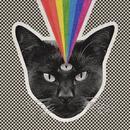 Black Cat thumbnail