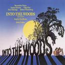 Into The Woods thumbnail