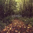 Walk In The Woods Ep thumbnail