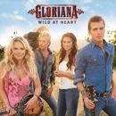 Wild At Heart (Radio Single) thumbnail