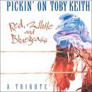 Pickin' On Toby Keith thumbnail