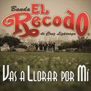 Vas A Llorar Por Mi (Single) thumbnail