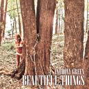 Beautiful Things thumbnail